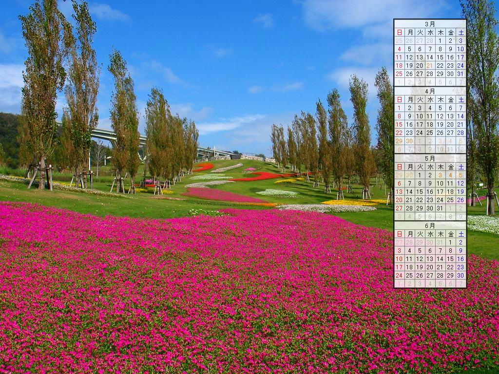 ... カレンダー/2007年4月~2007年7月